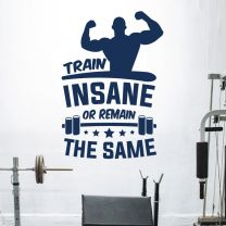 Train Insane or Remain the Same - Motivational Gym Decal Wall Sticker